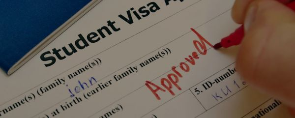 The decision to grant a visa