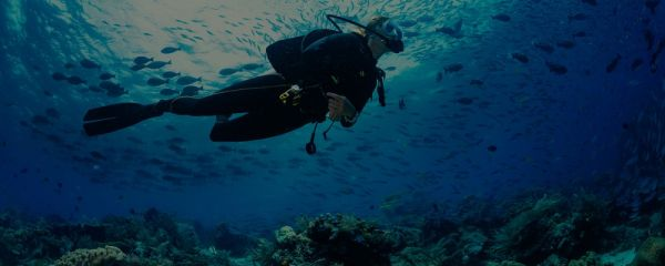 Scuba diver diving on tropical reef with blue background and reef fish